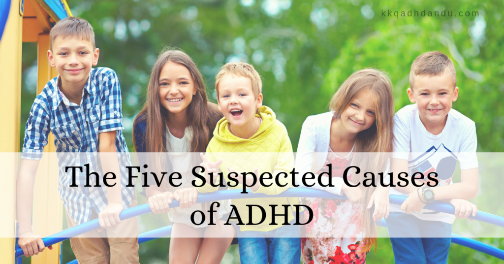 The Five Suspected Causes of ADHD